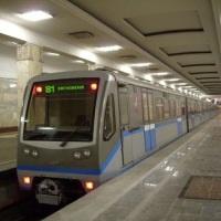 Калининско-Солнцевскую линию метро могут продлить до Внуково