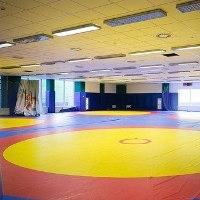 В посёлке Марьино построят споркомплекс для Федерации спортивной борьбы