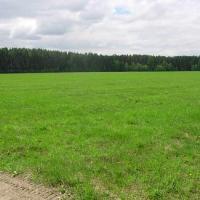 Участок земли Новомосковский округ