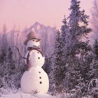 Фестиваль снеговиков пройдет в Новомосковском округе