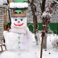 В ТиНАО появились снеговики-кормушки