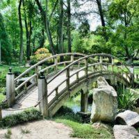 Парк на территории ЖК «Скандинавия» в Новомосковском округе планируют открыть осенью