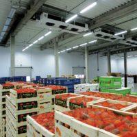В районе станции Крекшино построят крупный складской комплекс