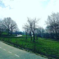 Благоустройство парка «Филатов луг» началось в Новомосковском округе