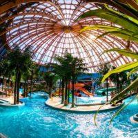 Самый большой в России аквакурорт появится в Новомосковском округе